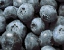 Simply Blueberries
